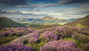 Church Stretton and the Shropshire Hills Area of Outstanding Natural Beauty